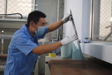 Coperchio posteriore di vetro chiaro Tempered dello Shandong 4mm