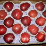 Hight Quality Fresh Huaniu Apple, FUJI Apple, Qinguan Apple
