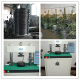 Fabricante inoxidable de la bola de acero AISI304 de la venta caliente
