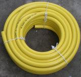 Tubo flessibile di giardino del PVC (colore giallo/colore rosso)