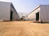 Пакгауз стальной структуры/здание металла полуфабрикат (SS-331)