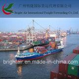 La distribution bon marché d'expédition internationale, fret maritime, expédition d'océan, service de logistique de Chine à dans le monde entier