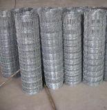 De gegalvaniseerde Geknoopte Omheining die van het Vee van het Netwerk van de Draad in Kudde (anjia-519) gebruikt