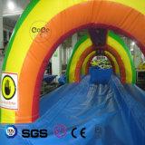 Glissière d'eau gonflable de thème d'arc-en-ciel d'utilisation de Commerical de modèle de Cocowater LG8092