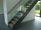 Лестница стрингера стальной плиты низкой стоимости прямая стеклянная с балюстрадой Tempered стекла Frameless для селитебного проекта