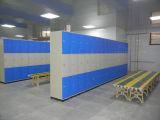 3 Schichten ABS Speicher-Schrank-Gymnastik-Gebrauch-Qualitäts-