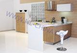 Kundenspezifische moderne Hauptmöbel-Land-Art-Möbel-hölzerne Küche-Schränke