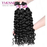 Cabelo malaio Curly italiano por atacado de Remy do Virgin