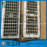 5000 stukken die per het Dienblad van het Ei van de Pulp van het Uur Machine van Pulp vormen die aan het Drogen van het Dienblad maken