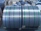 Building MaterialsのRal Galvanized Steel Coil