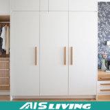 De in het groot Moderne Garderobe van het Project MDF (ais-W015)