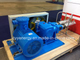 Cyyp 55 Uninterrupted Service Large Flow e High Pressure LNG Liquid Oxygen Nitrogen Argon Multiseriate Piston Pump