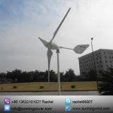 Piccola turbina di vento a magnete permanente (che espone al sole 1000W)