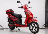 Elektrischer Roller mit Pedal E-Fahrrad mit hinterer vorderer Scheibenbremse des Kasten-350With500W 48V20ah