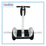 Manufacturer expert de Two Wheel Balance Scooter