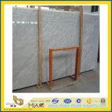 Carrarra weiße Marmorplatte für KücheCountertop