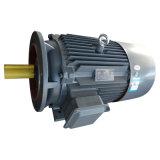 De Elektrische Motor van het lage Voltage