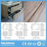 Vanidad moderna del cuarto de baño del MDF de madera con la cabina de almacenaje (BF113M)