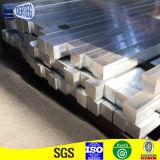 L'alluminio si è sporto fornitore del professionista di profilo