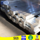 L'aluminium a expulsé fournisseur de professionnel de profil