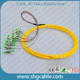 12 de Optische Vlecht van de Vezel van de Bos G652D Sm van de kern FC/APC-9/125um