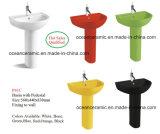 362 articles sanitaires de couleurs, toilette d'une seule pièce