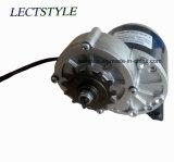 24V 200W 300W DC Worm Gear Motor eléctrico para Scooter y carro de golf