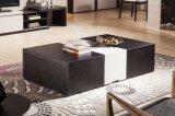 Tavolino da salotto di legno funzionale di stile moderno (CJ-2032)