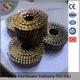 중국에 있는 직업적인 공급자에게서 좋은 품질 나사 정강이 깔판 코일 못