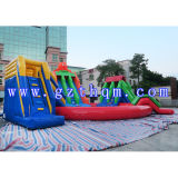 Parque inflável gigante da água dos adultos dos miúdos com a grande associação inflável/parque inflável de Qqua