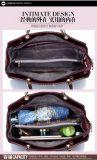 يزيّن تمساح نمو 3 [بكس] محدّد مركّب حقيبة إمرأة سيادة [بورس] [بو] مصممة حقيبة يد