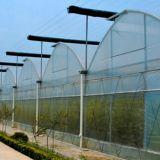 식물성 성장하고 있는을%s 다중 경간 플레스틱 필름 온실