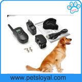 O cão do treinamento do animal de estimação da fábrica descasca o colar, produto do cão