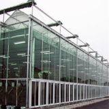 Grande estufa de vidro agricultural para o cogumelo/rosas/tomates