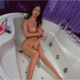 Muñeca adolescente joven del sexo de la belleza de la piel asiática de Tan (los 146cm)