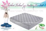 El más barato El nuevo venir cama colchón de muelles continuo