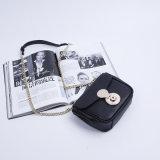Dz022. Mini borsa di modo del sacchetto delle donne delle borse del progettista della borsa delle signore di sacchetto della spalla della l$signora Single del sacchetto della catena del sacchetto