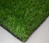 Landscape (MA)를 위한 높은 Quality Artificial Grass