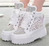 Nueva colección Aumento interior del talón de cuero Zapatos de mujer (HS8-2)