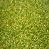 Landscape (BSB-20F-415-BS)のための人工的なGrass Highquality