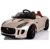 De 12volt- Vergunning gegeven Rit van jonge geitjes op de Jaguar van de Auto