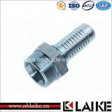 (10512) Garnitures de tube hydrauliques mâles métriques de Swagelok d'acier du carbone