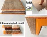 El panel de techo del PVC para el &Bathroom y la sala de estar del &Bedroom de la cocina