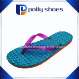 Neuer Frauen-Flipflop Sports Sandelholz-blaues orange Purpur