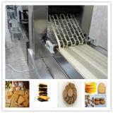 Industrie-Biskuit-Plätzchen-Produktionszweig, der Maschine herstellt