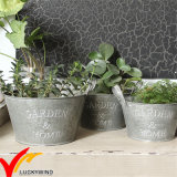 Wholesales Small Rustic Vintage Style Handmade Metal Tin Garden Flower Pot
