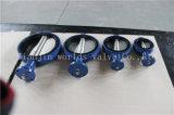 De Concentrische Vleugelklep van de rubberVoering met Goedgekeurd Ce ISO Wras