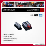 LED-Röhrenblitz-Gitter-Licht (LTDG2-31)