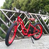 뚱뚱한 타이어 48V 500W E 자전거 (RSEB-506)