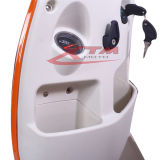 vespa eléctrica adulta de 200W 250W 300W 500W barato